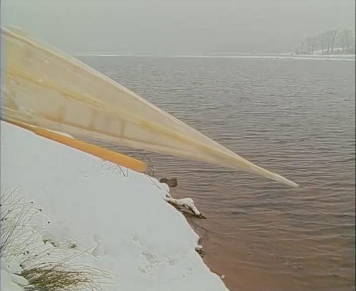Grönländer im Winter, Fränkisches Seenland, 2004